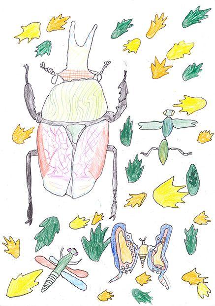 Gewinner-Zeichnung, Bild Sonderpreis Forum Biodiversität, 10 bis 12 Jahre, Umwelt-Zeichnungswettbewerb 2019